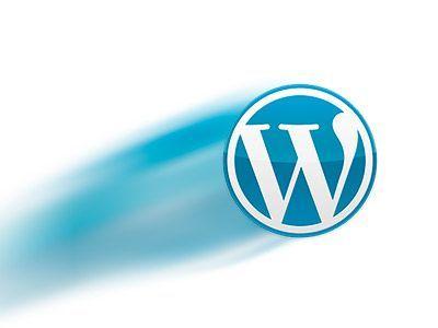 imagen WPO optimización WordPress
