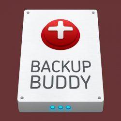 Revisión del Plugin BackupBuddy