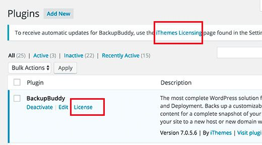 Revisión del Plugin BackupBuddy license keys